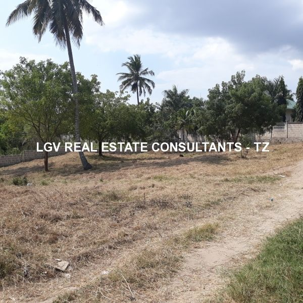 1100 Sqm piece of Land for sale at Goba