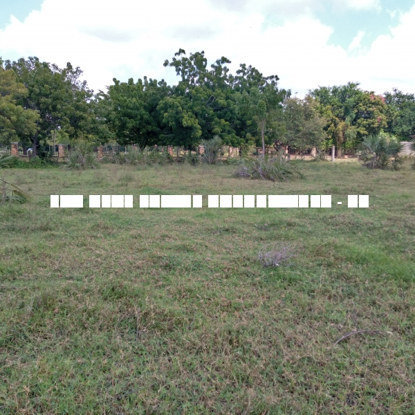 Plots For Sale at Kunduchi , Dar es salaam