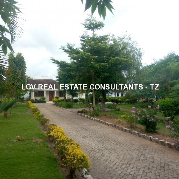 3 bedrooms Semi Furnished stand alone house for rent at Mbezi Beach, Dar es Salaam - Comes with 2 extra smaller houses in the same compound!